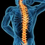 Illustration of an x-ray view of spine from the Reyna Law Firm